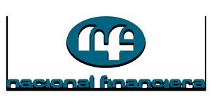 nafinsa_logo